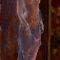 Maler und Modell – Rembrandt malt Saskia